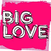 Big Love Tuff Love - EP by Various Artists