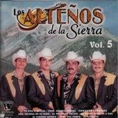 Vol.5 by Los Alteños De La Sierra