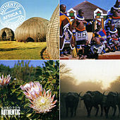 Authentic Africa, Vol. 2 by Various Artists
