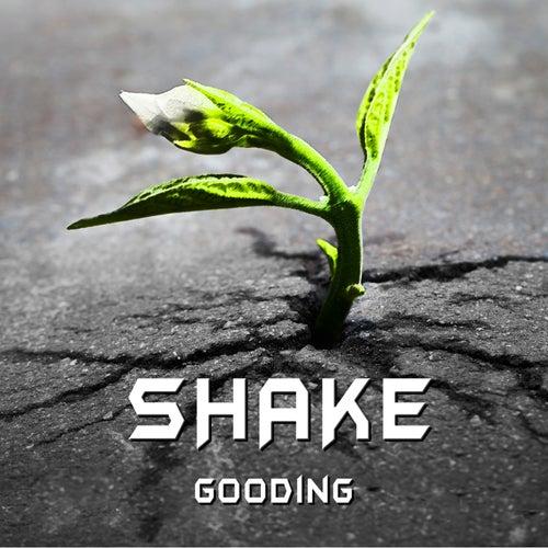 Shake - Single by GOODING