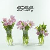 Death Of A Slug by Northbound