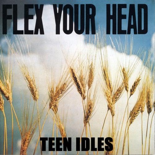 Flex Your Head by Teen Idles