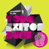 Todo Exitos 2015 (Los Numero 1 Del Año) de Various Artists