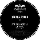 The Palisades EP von Sleepy