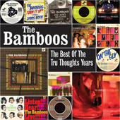 The Best of the Tru Thoughts Years de Bamboos