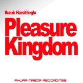 Pleasure Kingdom by Burak Harsitlioglu