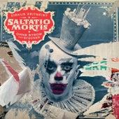 Zirkus Zeitgeist - Ohne Strom und Stecker von Saltatio Mortis