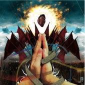 Seed'n'feed - Blake by Various Artists