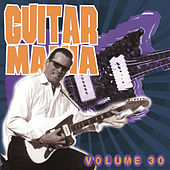 Guitar Mania Vol. 30 by Various Artists