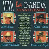Viva la Banda by Various Artists