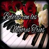 Boleros Con los Mejores Tríos de Various Artists