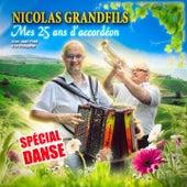 Mes 25 ans d'accordéon (Spécial danse) by Nicolas Grandfils