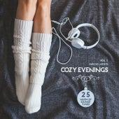 Cozy Evenings, Vol. 1 (25 Warm up Lounge Tunes) von Various Artists