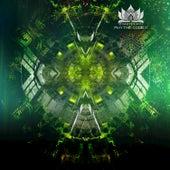 Rhythm Code II de Various Artists
