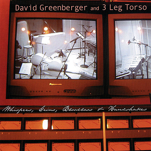 Whispers, Grins, Bloodloss and Handshakes by David Greenberger