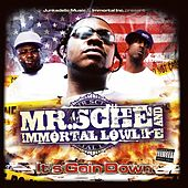 It's Goin' Down by Immortal Lowlife