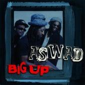 Big Up by Aswad
