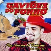 Gaviões do Forró, Vol. 3 (Ao Vivo) de Gaviões do Forró