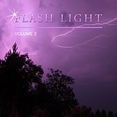 Flash Light, Vol. 2 by Various Artists
