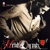Hridoy Mix, Vol. 2 (feat. Sami, Sandipon, Nirjhor, Arif & Rintu) de Hridoy Khan
