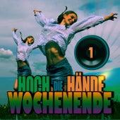 Hoch die Hände Wochenende 1 de Various Artists