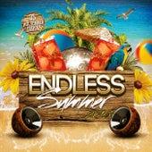 Endless Summer 2015 von Various Artists