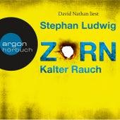 Zorn - Kalter Rauch (Ungekürzt) by Stephan Ludwig