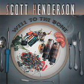 Well to the Bone by Scott Henderson