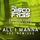 All I Wanna The Remixes von Disco Fries