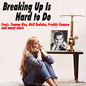 Breaking up Is Hard to Do di Various Artists