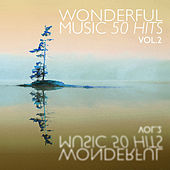 Wonderful Music - 50 Hits Vol. 2 by Various Artists