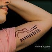 Made in Brasil de Moyseis Marques