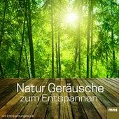 Natur Geräusche zum Entspannen von Entspannungsmusik