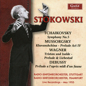 Leopold Stokowski von Various Artists