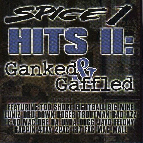 Hits II by Spice 1