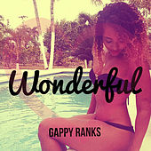 Wonderful by Gappy Ranks