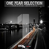 One Year Selection - EP by Various Artists