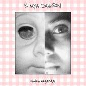 Hidden Vagenda by Kimya Dawson