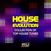 House Evolution (Collection of Top House Tunes) by Various Artists