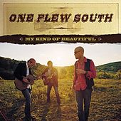 My Kind Of Beautiful by One Flew South