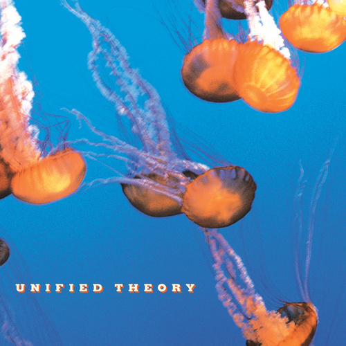 Unified Theory by Unified Theory