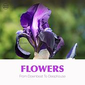 Flowers, Vol. 1 (From Downbeat to Deep House) de Various Artists