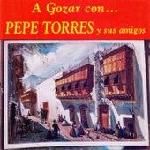 A Gozar Con Pepe Torres y Sus Amigos de Various Artists