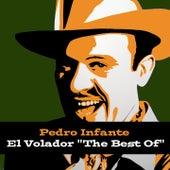 Pedro Infante: El Volador