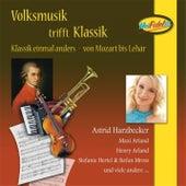 Volksmusik trifft Klassik de Various Artists