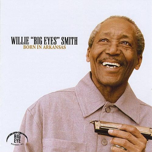 Born in Arkansas by Willie Big Eyes Smith