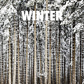 Winter di Various Artists