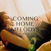Coming Home Melodys, Vol. 3 (Beautiful & Relaxing Electronic Music) by Various Artists