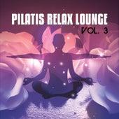 Pilatis Relax Lounge, Vol. 3 (Finest Music for Pilatis & Yoga Sessions) von Various Artists
