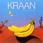 Dancing in the Shade by Kraan